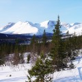 "Ski tours in KOLA Peninsula region. The North part of Russia. Polar lights ""Aurora"" seeing. 2016 – <b>from 755 EUR€</b>"