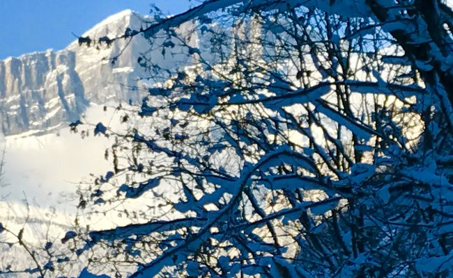 les_houches_7